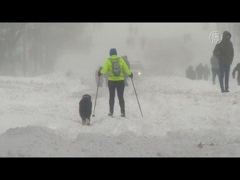 На США обрушился «снегопад века» (новости) (видео)