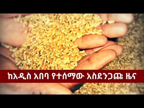 BBN Daily Ethiopian News April 28, 2018