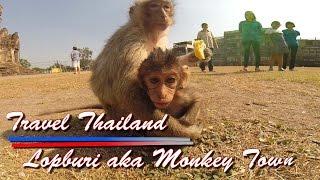 Lopburi Thailand  city photos : Travel Thailand 2015 Lopburi Monkey Town Phra Kann Shrine Prang Sam Yot
