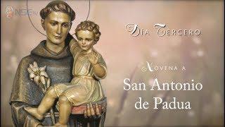 DÍA 3 - NOVENA SAN ANTONIO DE PADUA