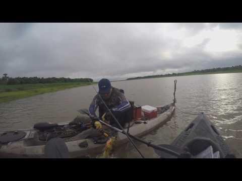 ------  Pescaria de Tucunaré Malandro em Sertaneja-PR ------