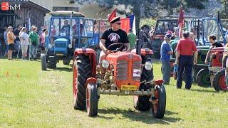 Náhled - Dva tisíce návštěvníků shlédlo 7. ročník srazu historických traktorů v Pavlově
