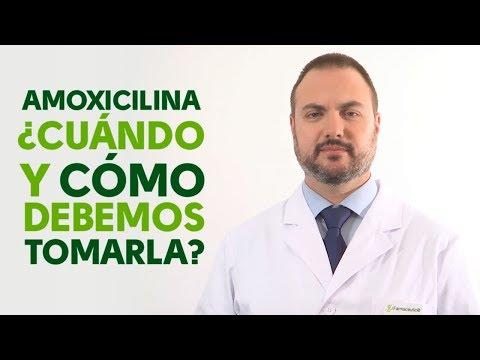 Amoxicilina, cuándo y cómo debemos tomarla