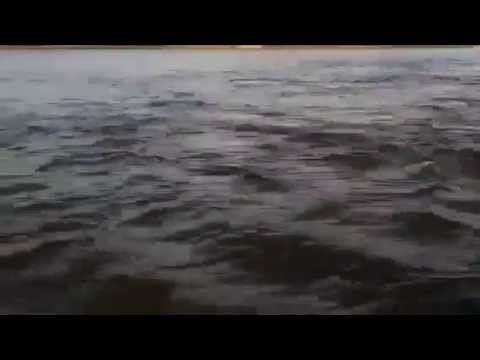 ▶ White Bass Fishing on the Mississippi!