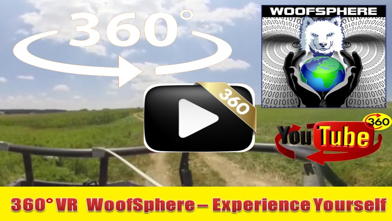 360 Videos | VR | Virtual Reality | Husky Dog FreeRanging Put To Guitar Meditations
