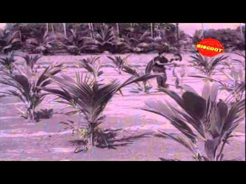 Sithi │ Full Tamil Movie Online │ Gemini Ganesan, Padmini