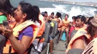 Paracas Peru  city pictures gallery : TOUR ISLAS BALLESTAS Y PARACAS - PERU