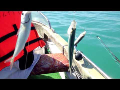 как ловить рыбу сверху черном град  не без;  лодки