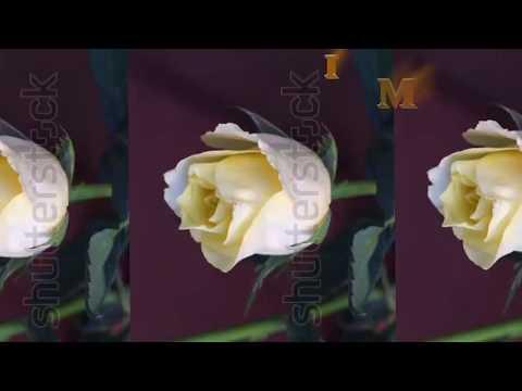 Video songs - সুন্দর একটি নাতে রাসূল, শুনলে মনে শান্তি আসবে। New Video song 2017