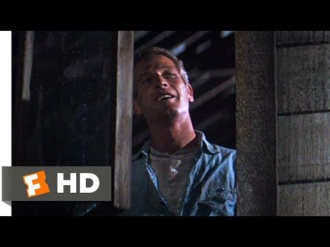 Cool Hand Luke (1967) - That Ol' Luke Smile Scene (8/8) | Movieclips