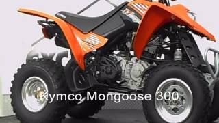 7. Kymco Mongoose 300