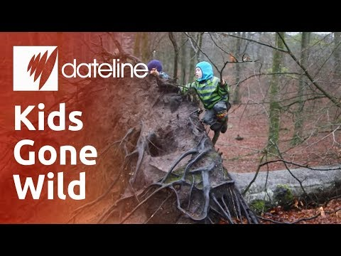 Kids Gone Wild: Denmark's Forest Kindergartens
