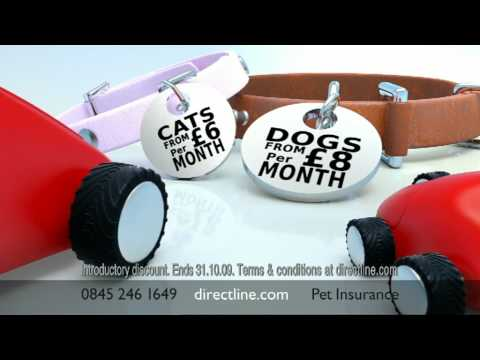 Direct Line Pet insurance - New TV advert featuring the voices of Stephen Fry and Paul Merton.