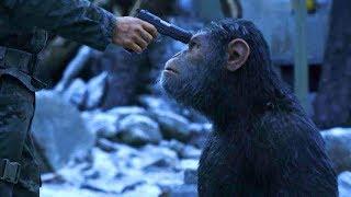 映画『猿の惑星:聖戦記(グレート・ウォー)』特別映像