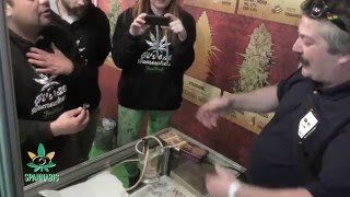 Spannabis 2016 Dabbing with Fast Buds American Autoflower by Urban Grower