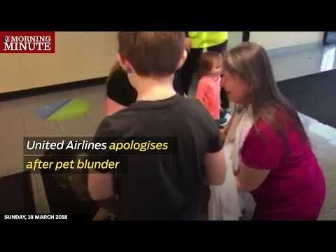 United Airlines apologises after pet blunder
