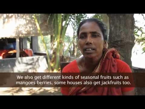 Murky Waters: Shrimp Farming in Bangladesh