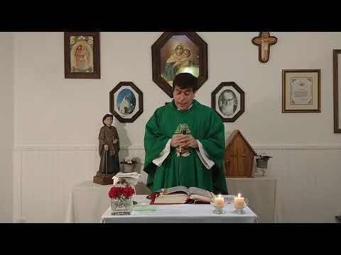Misa del Domingo XXX durante el año (25 de octubre de 2020)