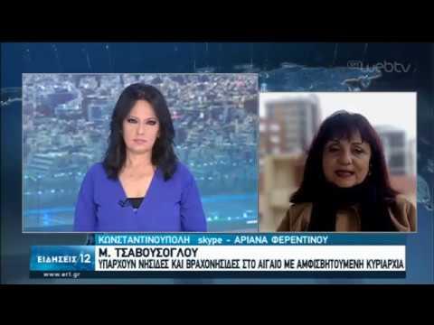 Νέες προκλητικές δηλώσεις Τσαβούσογλου | 16/01/2020 | ΕΡΤ