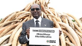 There is need to do more after burning ivory, Chris Kirubi