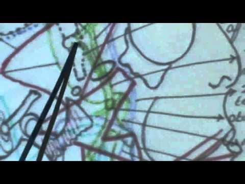 7) Dr.Ahmed Galal 21/10/2014 [ Temporomandibular joint - Mandibular Nerve ]