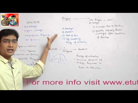 demo video lectures on enzymes for AIPMT,BHU,AIIMS,AFMC,WBJEE