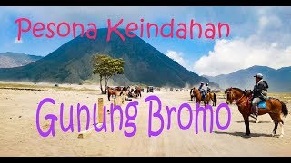 Download Video PESONA KEINDAHAN GUNUNG BROMO (Pananjakan, Lautan Pasir, Padang Savana dan Kawah Bromo) Jawa Timur MP3 3GP MP4