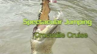 Jumping crocodile Cruise