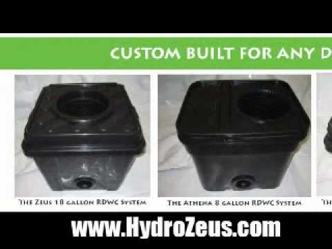 DWC – Hydroponic Growing System Michigan – Hydro Zeus