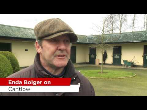 Enda Bolger Stable Tour