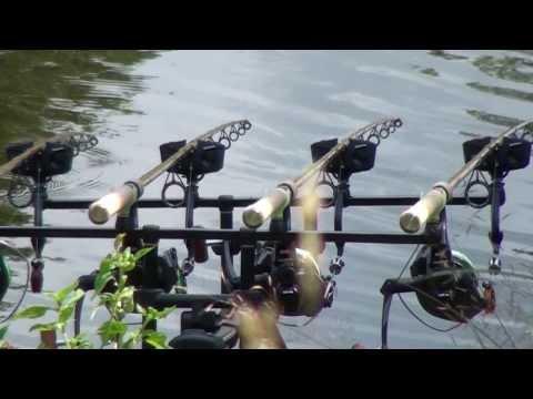 оснастка на толстолобика технопланктон видео