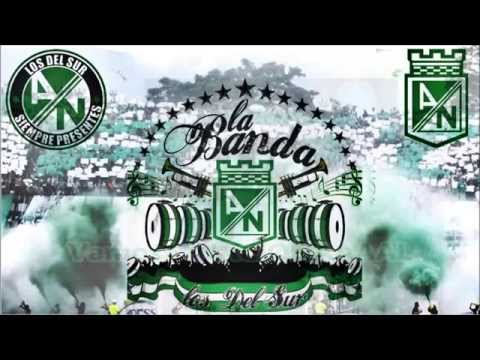 LA BANDA LOS DEL SUR - Al Campeon yo lo llevo en el corazon - Los del Sur - Atlético Nacional