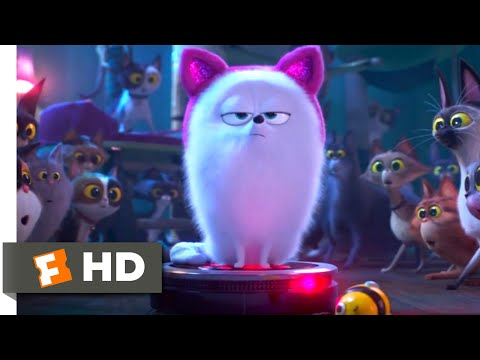 The Secret Life of Pets 2 - Dog vs. Cats Scene (5/10) | Movieclips