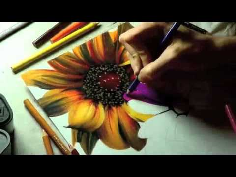 Sun Flower Drawing Tutorial by Heather Rooney