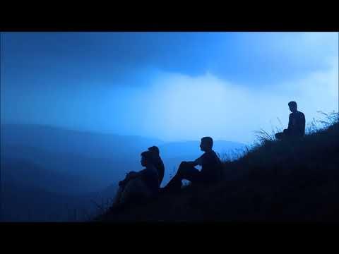 Stevie Wolf - Yves Klein Blue