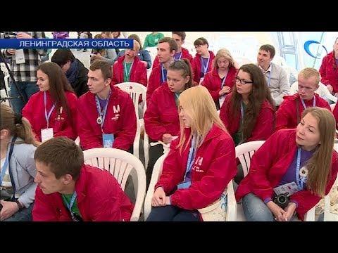 Молодых, активных и целеустремленных в очередной раз собрал на берегу Финского залива форум «Ладога»