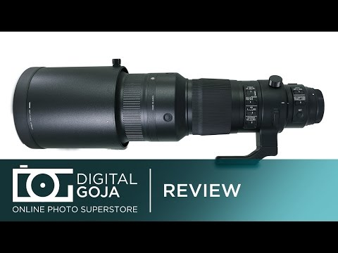500mm Lens for Canon: Sigma 500mm F4 DG OS HSM Sports Lens | Sample Images