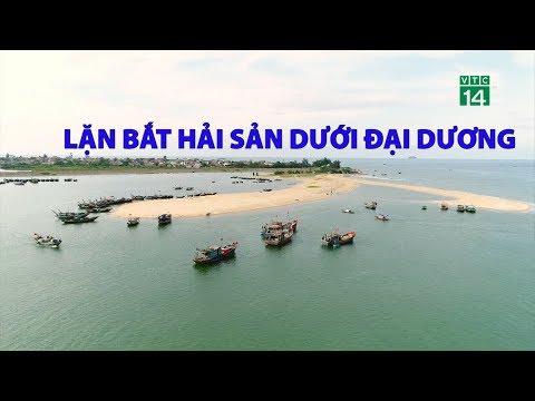 Lặn bắt hải sản dưới đại dương | VTC14