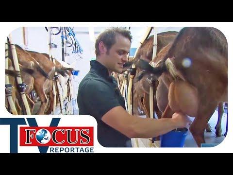 Die Landwirtschaft zwischen Höfesterben und Landlust - Focus TV Reportage