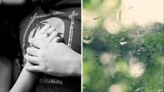 lagu untuk winda ( you are ) - Nani Sugianto