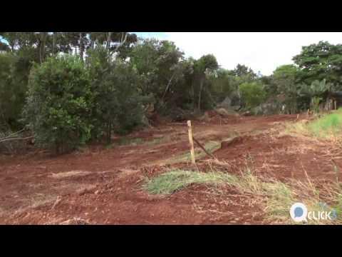 Prefeitura de Três Barras faz terraplanagem em reserva legal?