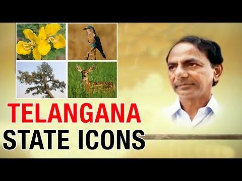 Telangana CM KCR declared the state icon symbols