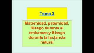 Umh1909 2012-13 Lec003 Maternidad, Paternidad, Riesgo Durante El Embarazo Y La Lactancia Natural