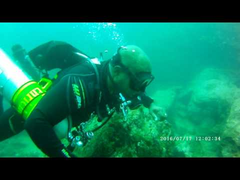 Diving Sidemount at Taprobane Divers, Trincomalee, Sri Lanka - and lots of fish!