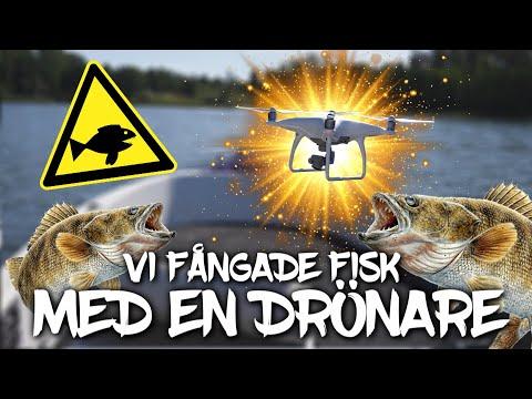 FÅNGAR FISK MED EN DRÖNARE - DET FUNKADE!