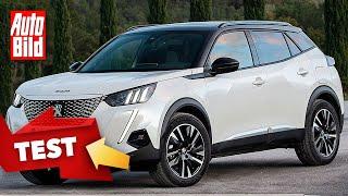 Peugeot e-2008 (2020): Neuvorstellung - Elektro - SUV - Infos by Auto Bild