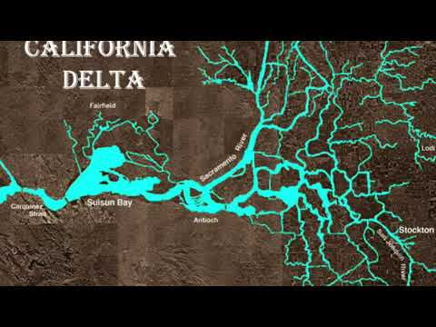 Sea Level Rise Implications to San Francisco Bay Wetlands and Delta smelt