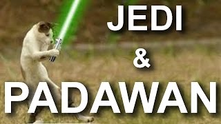 Video JEDI & PADAWAN - PAROLE D'ANIMAUX MP3, 3GP, MP4, WEBM, AVI, FLV Mei 2018