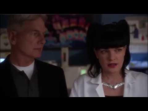 Gibbs & Abby || Unsteady