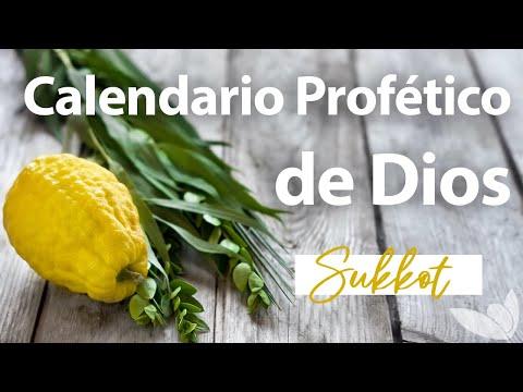 Fiesta de Tabernáculos (Sukkot) - Calendario Profético de Dios - Jim Staley